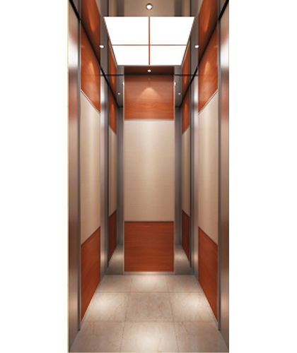 歌拉瑞别墅电梯-雅芙系列HC114